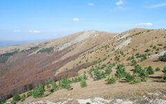 simferopol-chatyrdag-alushta-yalta-2