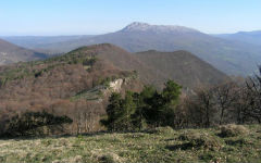 simferopol-crimea-reserve-gursuf-2
