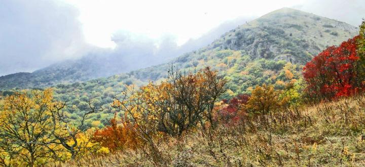 beauty-and-nature-alushta